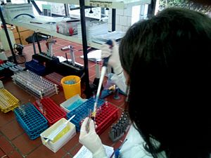 Biochemist - Biochemist working in biochemical laboratory