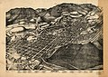 Bird's eye view of Aspen, Pitkin Co., Colo. 1893. LOC 75694514.jpg
