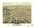 Bird's eye view of Reedsburg, Sauk County, Wis. 1874. LOC 73694552.jpg