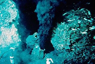 スチャラカでスーダラな日々東太平洋の海底コメント