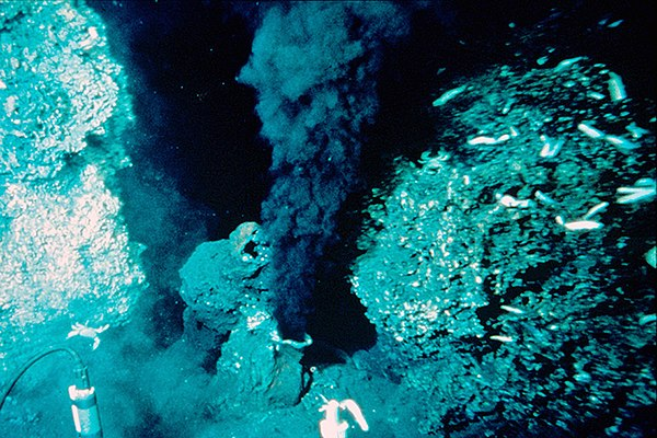 origin of life theory deep sea vents It also is not a leap to realize ultraviolet rays can penetrate the shallowest areas of water, so life may have begun somewhere deep in the ocean depths to stay protected from that ultraviolet light on the ocean floor, there are areas known as hydrothermal vents.
