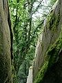 Blick durch einen Felsspalt im Burghain Falkenstein.jpg