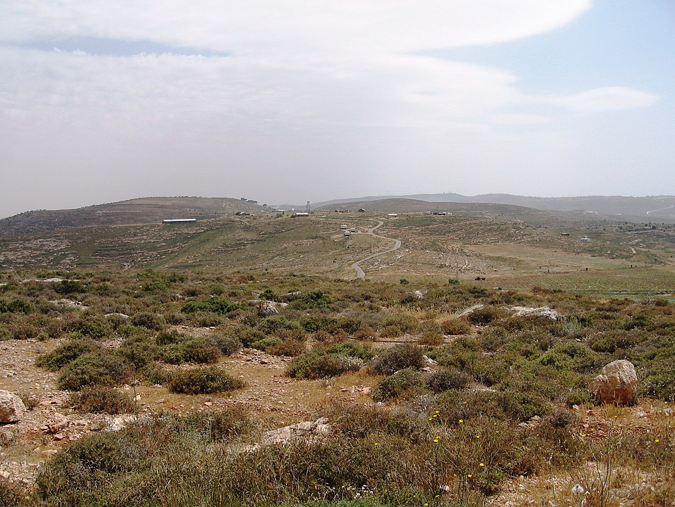 Bloc shilo from mount kida