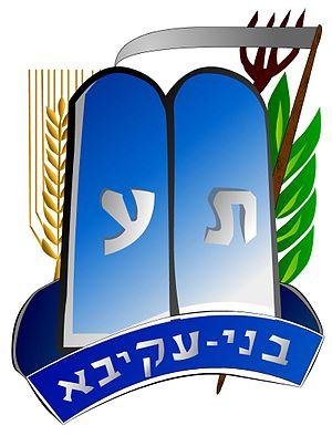 Bnei Akiva - Bnei Akiva emblem