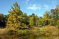 Botanischer Garten der Universität Zürich 2012-10-19 13-56-58.JPG