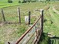 Boundary marker (obverse side) - geograph.org.uk - 440119.jpg
