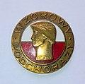 Brązowa Odznaka Wzorowy Podchorąży wz. 1982.jpg