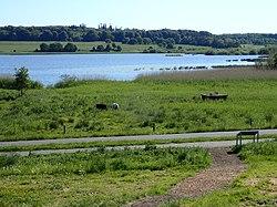 Brabrand Lake - Wikipedia