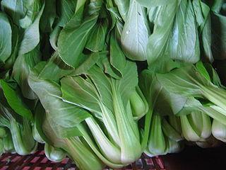 ondersoort uit de soort Brassica rapa