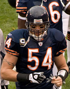 English: Brian Urlacher of the Chicago Bears