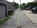 Brick alley with line of replacement brick (4763108952).jpg
