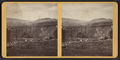 Bridge at Portage, N.Y, from Robert N. Dennis collection of stereoscopic views 2.png