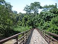 Bridge on the way to waterfall - panoramio.jpg