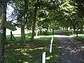 Bridleway to Ashmore - geograph.org.uk - 516540.jpg