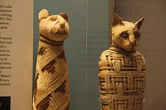 Animal mummy - Egyptian mummies of animals in the British Museum.
