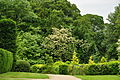 Brodsworth Hall gardens (9176).jpg