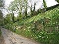 Brog Street in Spring - geograph.org.uk - 1252267.jpg