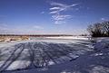 Bronnitsy lake Mar 2010 11.jpg