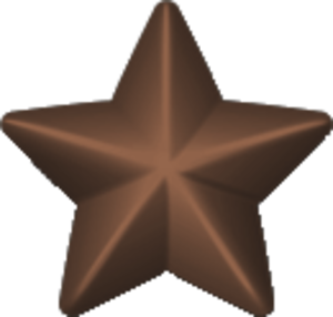 USS Livingston (AP-163) - Image: Bronze service star 3d