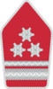 Bundesheer - Rank insignia - Offiziersstellvertreter