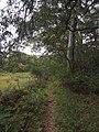 Burgh Track - panoramio.jpg