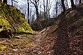 Burgruine-Hattstein-Halsgraben-JR-E-3742-2020-04-02.jpg