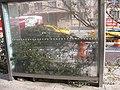 Bus Stop (8144641641).jpg