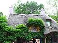 Bush Gardens - 113.JPG
