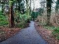 Bushy Park, Dublin -146457 (45754718404).jpg