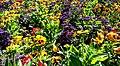 Butchart Gardens - Victoria, British Columbia, Canada (29294238532).jpg