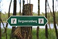 Butzen Bergsee Bergseerundweg 01.JPG