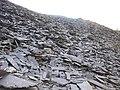 Bwlch-y-groes' lower tier waste tip from Caermeinciau - geograph.org.uk - 315159.jpg