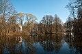 Bykovo Park.jpg