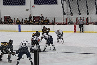 Colonial States College Hockey Conference - The College of New Jersey and West Chester University compete in the first round of the 2018 CSCHC Playoffs at Loucks Ice Center.