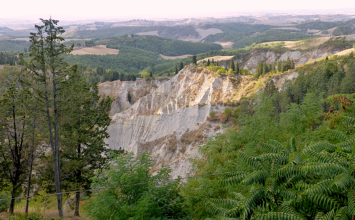 View on the calanchi, from Chiusure of the gully side just upslope of Monte Oliveto