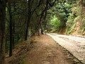 Camino por andar - panoramio.jpg