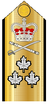 Canadian Vice-Admiral Shoulder Board.png