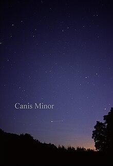 constellation petit chien
