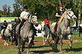 Carroussel à 16 chevaux montés Mondial du percheron 2011 Cl J Weber09 (23455266714).jpg