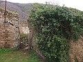 Casa diruta di Calbi - panoramio.jpg