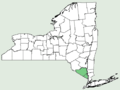 Castanea sativa NY-dist-map.png