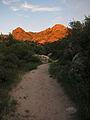 Catalina State Park sunset.jpg