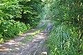 Ceļš, Džūkstes pagasts, Tukuma novads, Latvia - panoramio (1).jpg