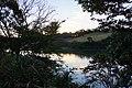 Central Forest Park 中央森林公園 - panoramio.jpg