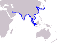 Cetacea range map Finless Porpoise.PNG