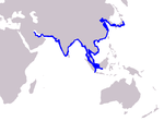 Indo-pacific finless porpoise range