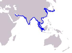 Finless porpoise - Image: Cetacea range map Finless Porpoise