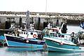 Chalutiers de pêche côtière (14).JPG