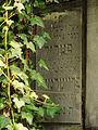 Chenstochov ------- Jewish Cemetery of Czestochowa ------- 57.JPG