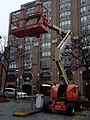 Cherry picker, George and Front, 2014 12 24 (3).JPG - panoramio.jpg